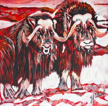 Musk Ox, Celebrate Canada, Yvette Cuthbert, Artist