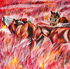 Sable Island Wild Horses, Celebrate Canada, Yvette Cuthbert